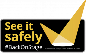 See it safely logo updated H
