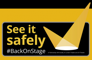 See it Safely Website